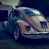 Evolution De La Vw Coccinelle - last post by oldspeednico